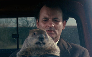Is it Groundhog Day in your Business, Every Day?